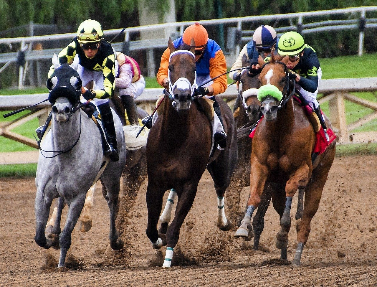 May Races